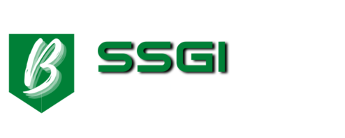 SSGI for Business